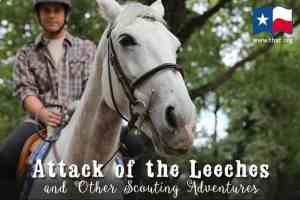 Attack of the Leeches and Other Scouting Adventures