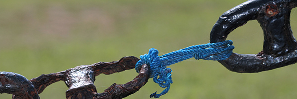 usabilidad-7-links
