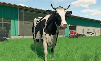 Farming Simulator 22 - Cow