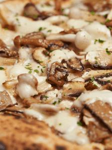 Mushroom Pizza Recipes