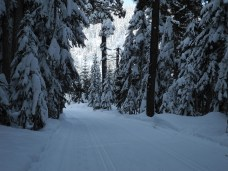 White Pass Dec 2012 009