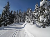 White Pass Dec 2012 034