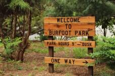 Burfoot Park Olympia Washington (1)