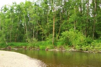 Pioneer Park Tumwater Washington (16)