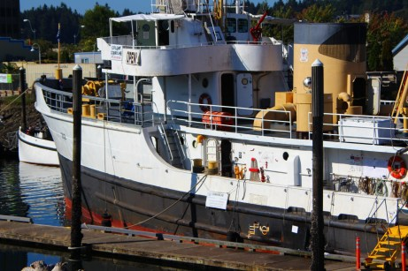 Olympia Harbor Days 2013 (6)