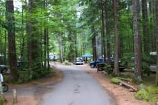Skokomish Park Lake Cushman Washington (1)