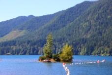 Skokomish Park Lake Cushman Washington (207)
