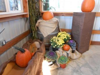 Pumpkin Patch 2013 009