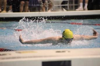 timberline boys swimming