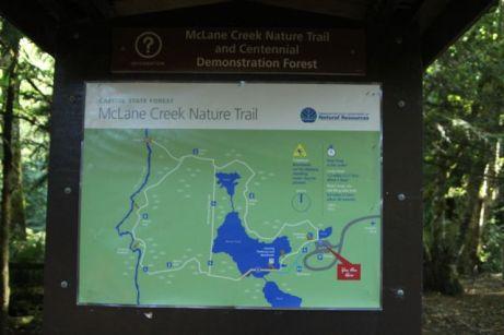 McLane Creek Nature Trail (3)
