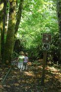 McLane Creek Nature Trail (4)