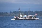 Harbor Days Olympia Washington 2015 (154)