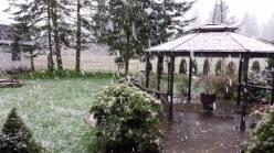 snow rochester