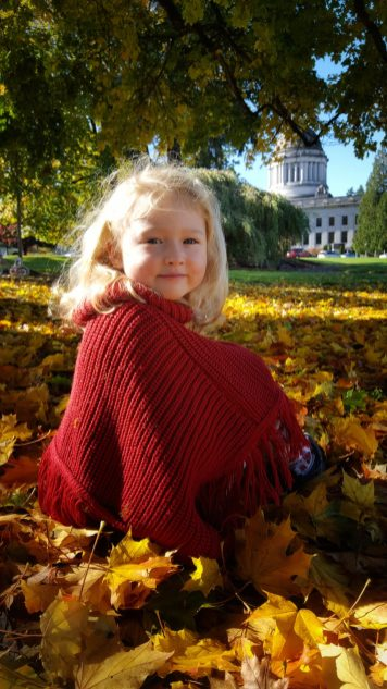 fall olympia capitol building