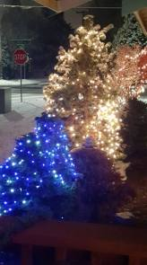 snow and lights