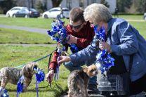 child abuse prevention month 2018 washington pinwheels