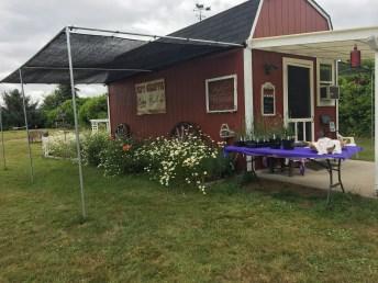 Evergreen Valley Lavender Farm 15