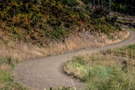 Rock Candy Mountain Capitol Forest Dirt Biking 10