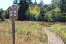 Rock Candy Mountain Capitol Forest Dirt Biking 4