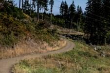 Rock Candy Mountain Capitol Forest Dirt Biking 6