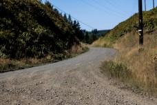 Rock Candy Mountain Capitol Forest Dirt Biking 7
