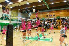 Tumwater Black Hills Volleyball 9142