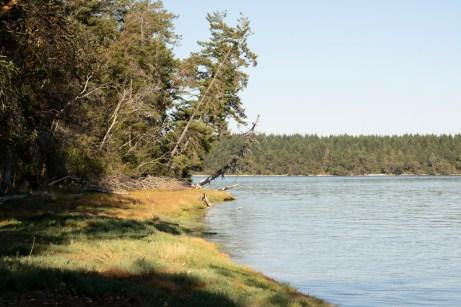 Hope Island Camping Washington State_24