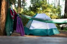 Hope Island Camping Washington State_27