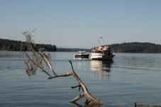 Hope Island Camping Washington State_3