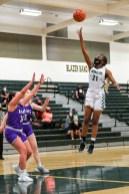 Timberline Girls Basketball 00014