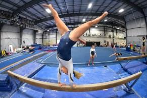 Gymnastics Capital Olympia North Thurston 7498