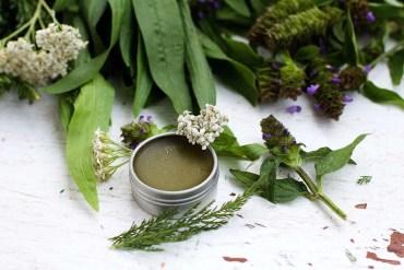 Purslane for a cooling, healing salad