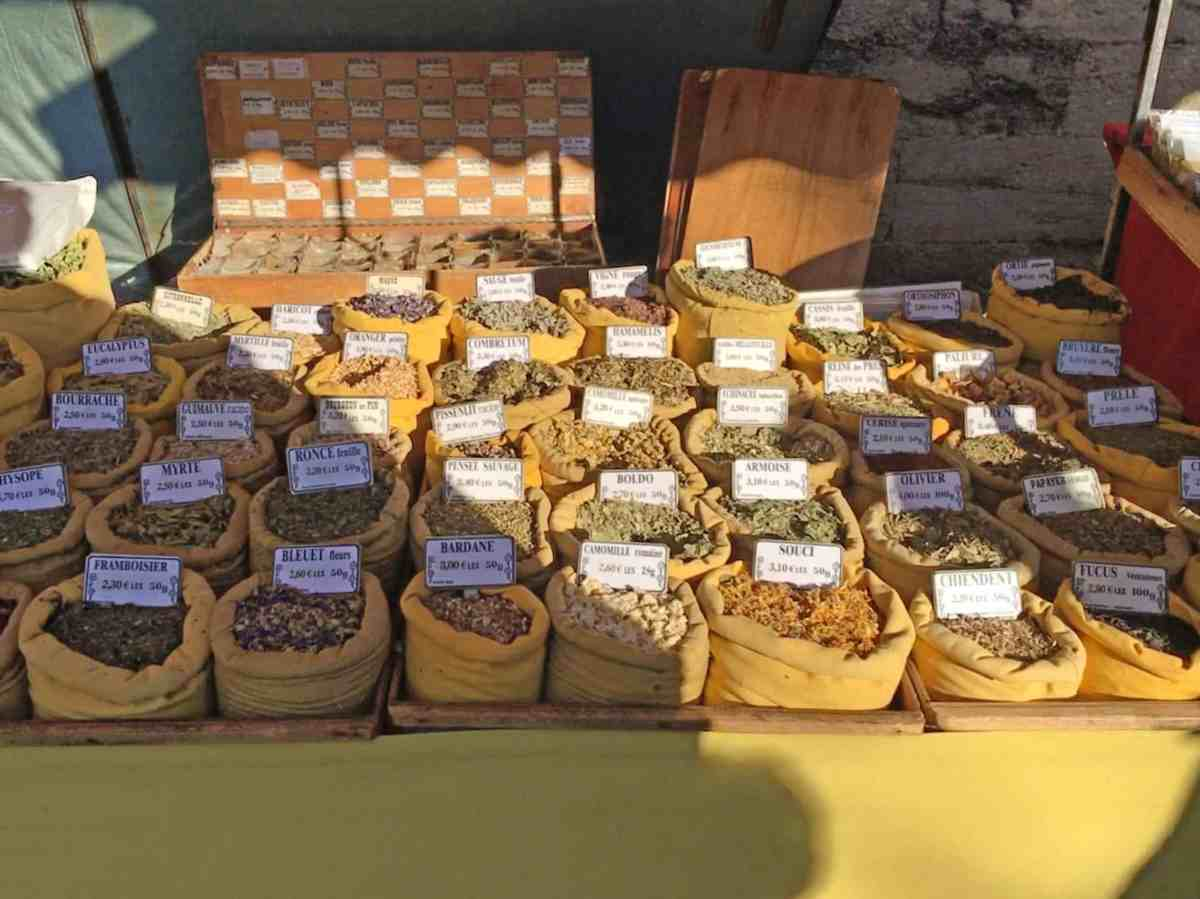 Montpellier Market and Learning French …