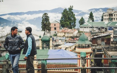 Ancora Darjeeling