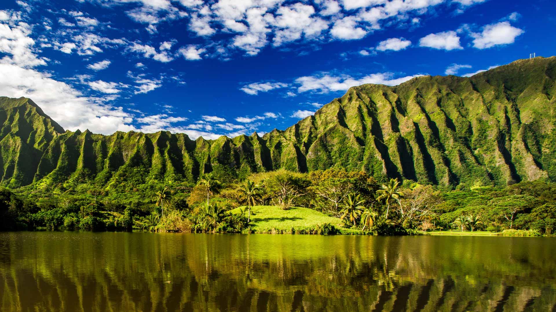 Hawaii al voor 426 retour vanaf amsterdam for Retour amsterdam