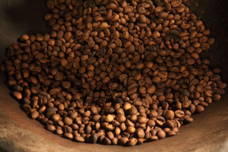 Kopi Luwak - Raosted coffee beans