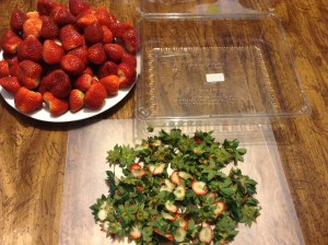 How I prep my strawberries. Cut off the leaves and stems if any from the top. Rinse before eating and storing.