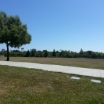 Park Days: Enjoying Our Summer
