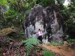 Caminata a la Sabana de los Leones en el Parque Nacional de Chirripó con Ticos A Pata, Hiking, Trekking, Senderismo, Caminatas