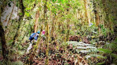Ticos A Pata Hiking Trekkng Caminata Romería entre Montaña