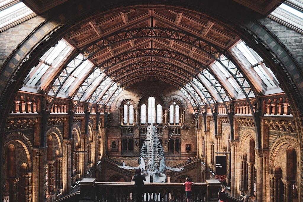 Brexit : top 5 des choses à faire à Londres avant le 29 mars 2019 Natural History Museum Musée d'Histoire Naturelle squelette dinosaure diplodocus hall principal