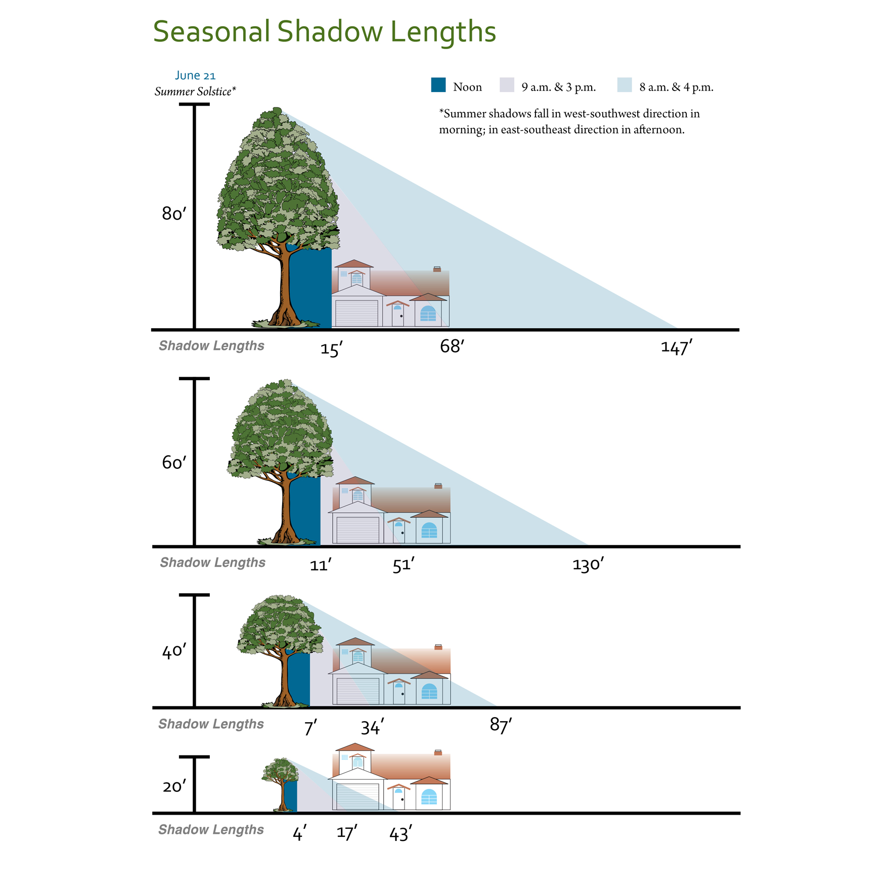 hight resolution of shade tree shadow lengths diagram of