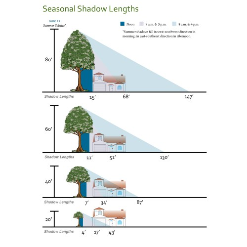 small resolution of shade tree shadow lengths diagram of