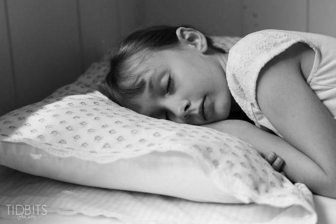 Reversible Pillow Case TIDBITS-27