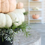 Fall Home Tour | On the Porch
