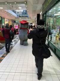 Orinoco followed by photographers at Wimbledon Centre Court shopping centre