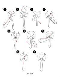 Windsor Knot | Tie-a-Tie.net
