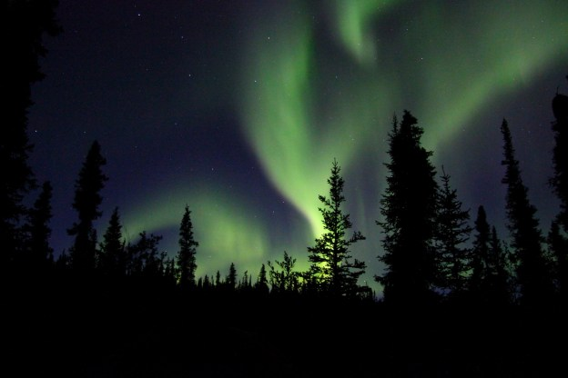 northern-lights-in-the-wilderness