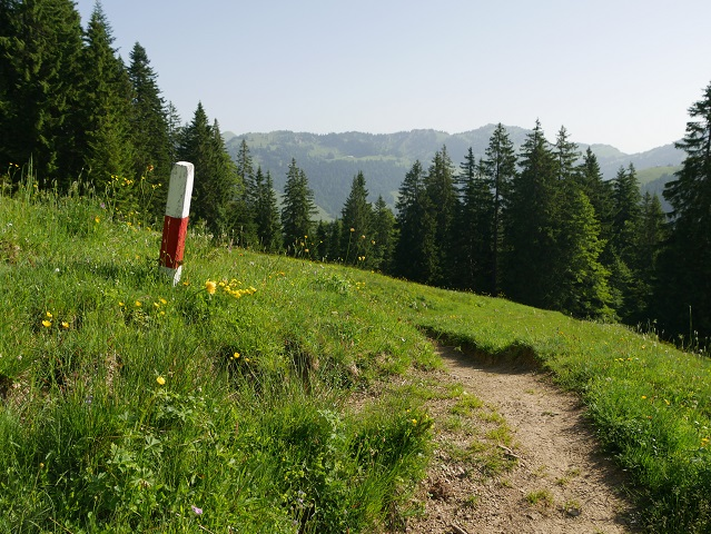 weiß-rote Wegmarke auf dem Weg von der Burgl-Hütte nach Balderschwang