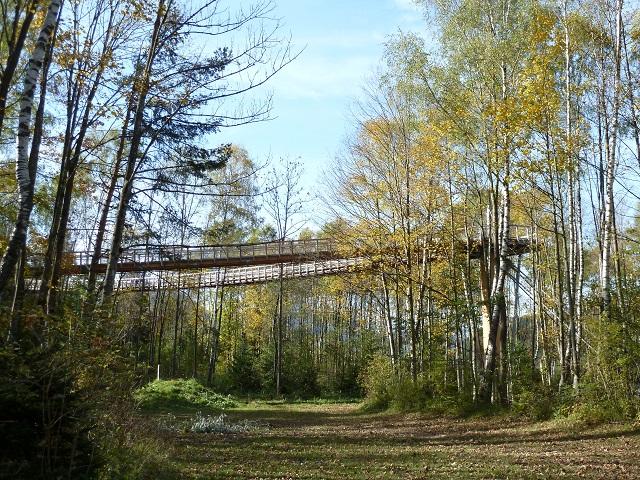 Blick auf den Baumwipfelpfad am Walderlebniszentrum Ziegelwies